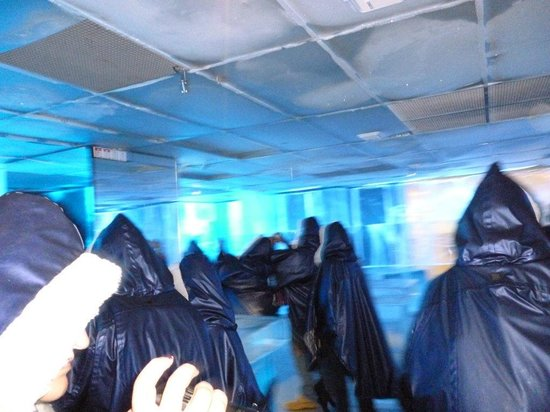 ICEBAR by ICEHOTEL Stockholm : vestiti per entrare all'icebar