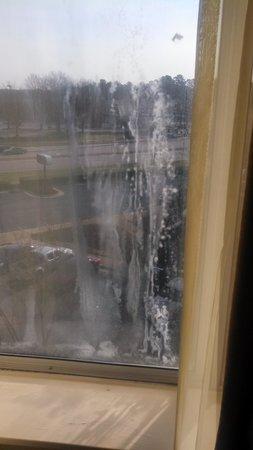Comfort Inn & Suites Crabtree Valley: Room Window