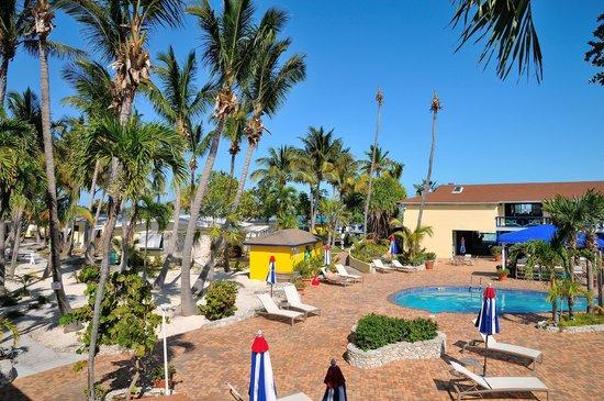 Bimini Big Game Club Resort & Marina: Pool and garden