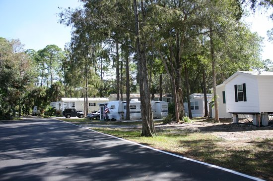 Naples RV Resort: Lots of trees and landscaping.