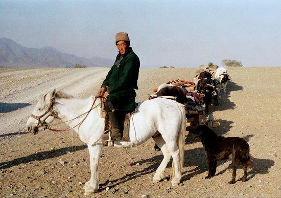 Idre Hostel : A nomad