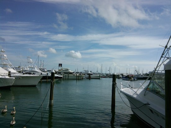 The Boathouse: our view during lunch