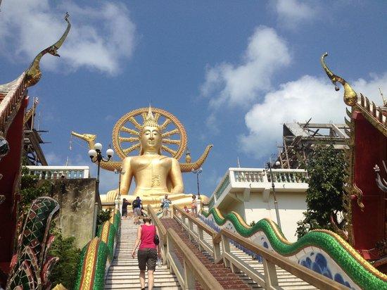 Big Buddha Temple (Wat Phra Yai) : Big bouddha