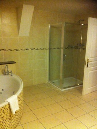 Bracken Court Hotel: Double Shower