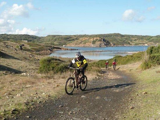 Mister Bike Tours