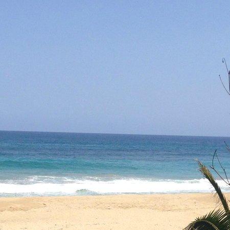 Royal Isabela : Beach