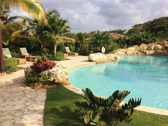 Royal Isabela : Pool area