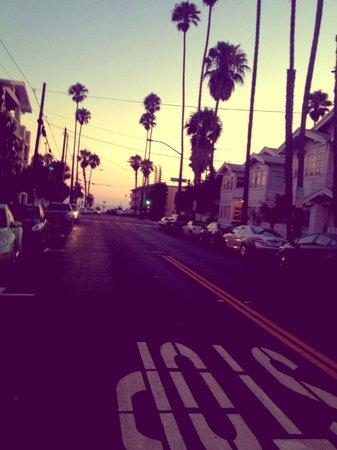 Viceroy Santa Monica : Road of hotel