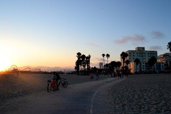 Viceroy Santa Monica : Sunset from beach