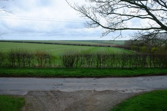 Langtoft, UK: View from room