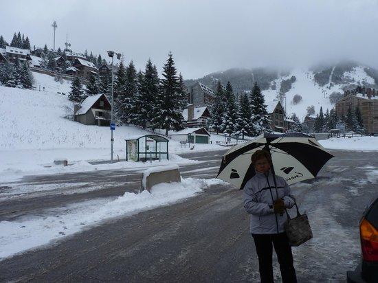 Husa Urogallo : excursion de invierno