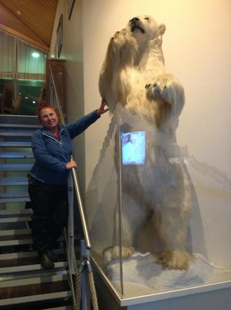 Radisson Blu Polar Hotel, Spitsbergen, Longyearbyen : Um urso nos recebe na recepção