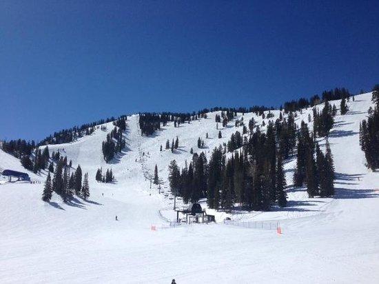 Solitude Mountain Resort: steep groomers on left
