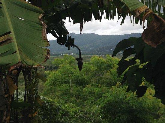 A Villa Gail : A great view