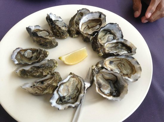 A Villa Gail: Oysters at Yorkey's Knob Boat Club