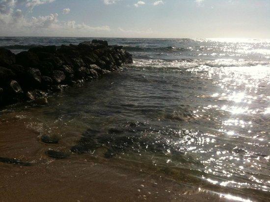 Waipouli Beach Resort: beach at hotel