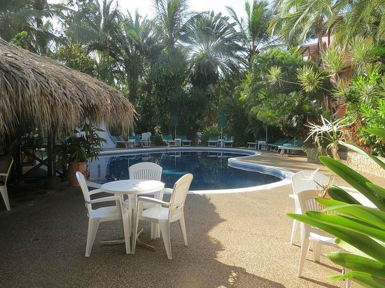 Hotel Coral Caribe: Hotellets pool
