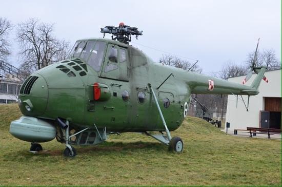 Cracovie : Polish chopper.