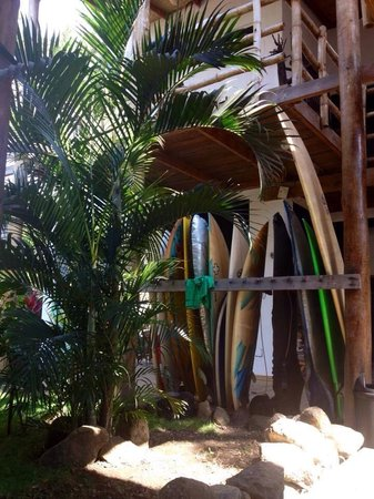 Eco del Mar: Board rentals