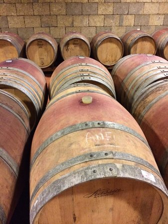 Tuscan Wine Tours by Grape Tours : oak barrels