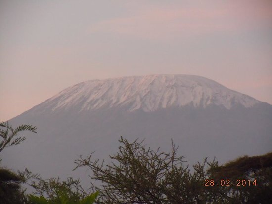 Kibo Safari Camp : Kilimanjaro
