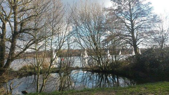 Brent Reservoir (Welsh Harp) Canalside: Sunny day