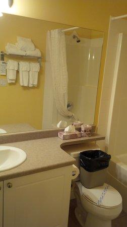 Stanton Suites Hotel: Bathroom (1)