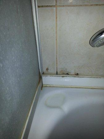 Istanbul Hotel Akdeniz: Schimmel in der Dusche