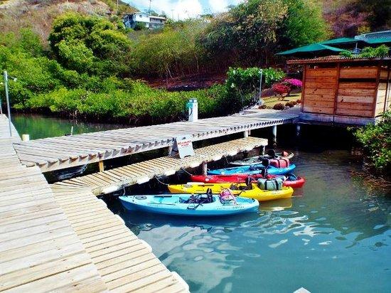 Conservation Kayak base at Whisper Cove Marina, Woburn Bay, Grenada
