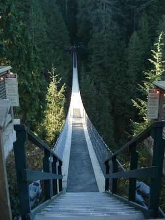 Parque y Puente colgante de Capilano: Ponte Suspensa.