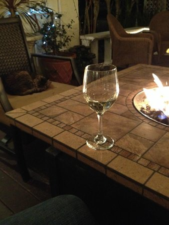 The Historic Peninsula Inn : Cozy fire with the local cat!