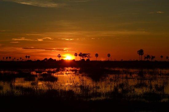 Selinda Camp: Selinda sunset