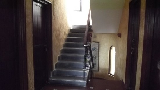 Afonso Guest House : Interior