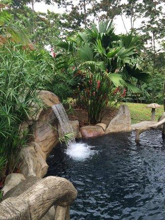 Hotel El Silencio del Campo: One of the hot springs at the resort