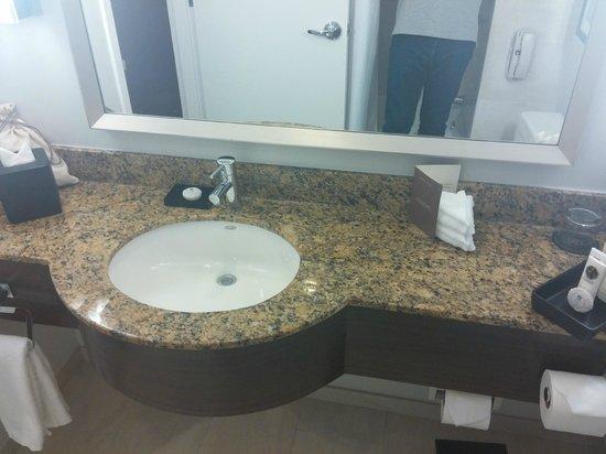 PULLMAN Miami Airport hotel : bathroom