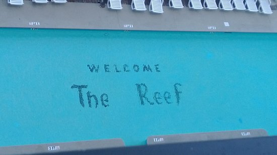 The Reef Myrtle Beach : Signature pool
