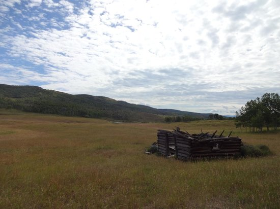 Focus Ranch: remotely away