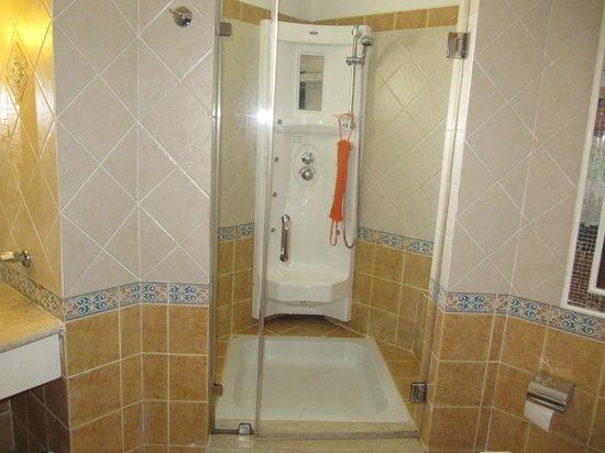 Domina Hotel & Resort Harem: Душевая кабина в номере