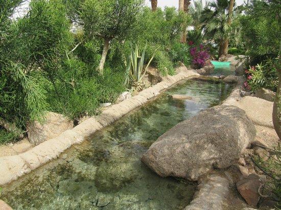 Domina Hotel & Resort Harem: На территории Домины