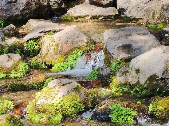 Mount Shasta City Park: SO PEACEFUL