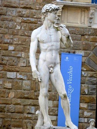 Florenz, Italien: Replica of David
