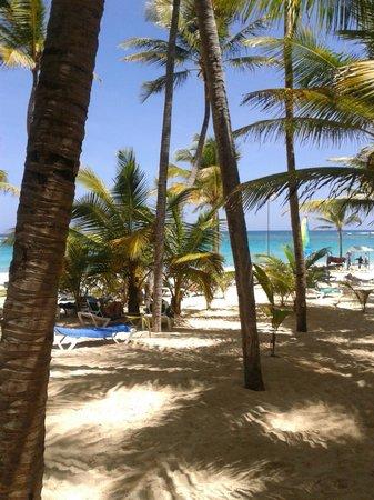 Hotel Riu Palace Punta Cana : Praia do hotel!!
