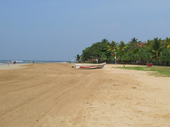 The Palms Hotel: The lovely beach