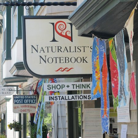 Seal Harbor, ME: Welcome to the Notebook!