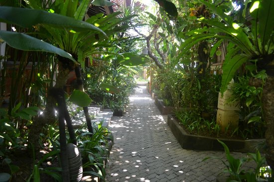Kuta Seaview Boutique Resort & Spa: pathway to the rooms