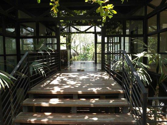 Revive Wellness Center at Langosta Beach Club