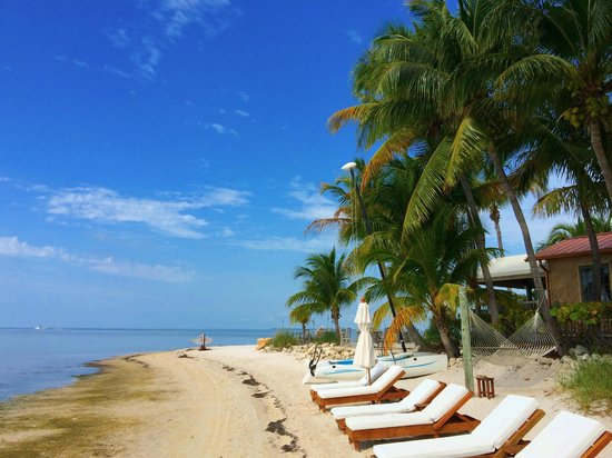 Little Palm Island Resort & Spa, A Noble House Resort: Little Palm Island - Beach