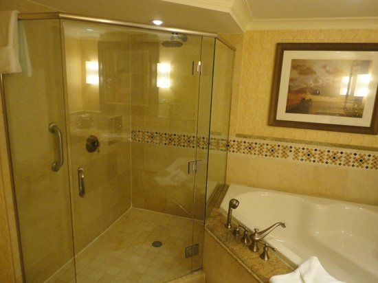 JW Marriott Marco Island Beach Resort: Rainfall shower