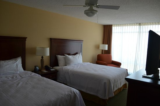 Homewood Suites Tampa Airport - Westshore: Room 501