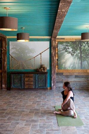 Deer Lake Lodge Resort & Spa: Yoga Studio